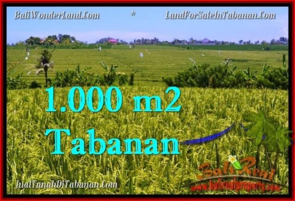 INVESTASI PROPERTY, TANAH di TABANAN BALI DIJUAL MURAH TJTB266