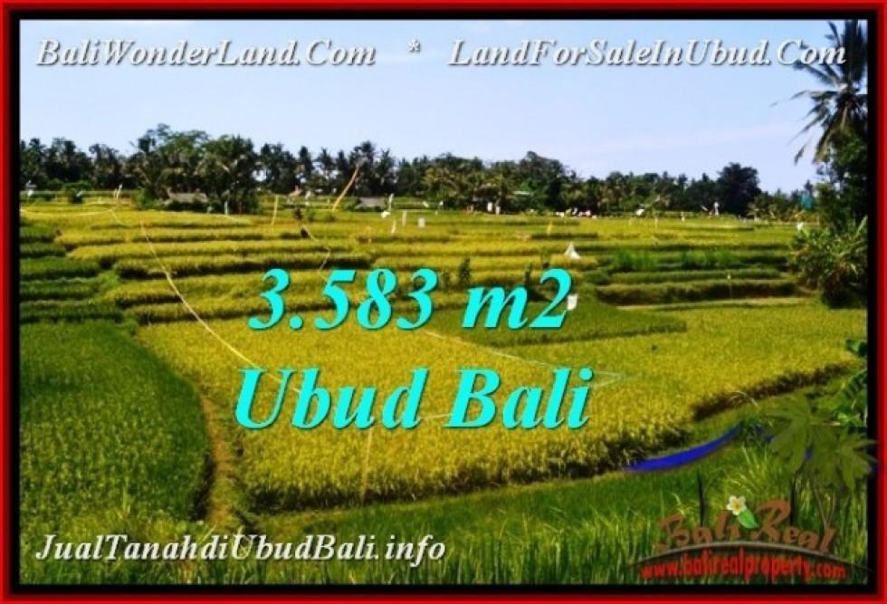 TANAH MURAH  di UBUD BALI DIJUAL 3,583 m2  View Sawah, link. villa