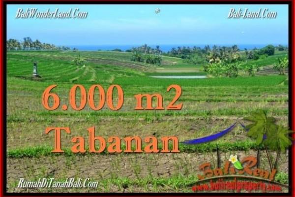 JUAL TANAH MURAH di TABANAN 6,000 m2  View Laut, Gunung dan sawah