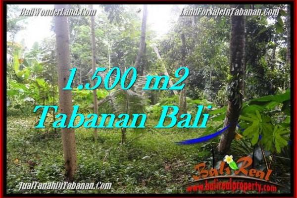 JUAL TANAH MURAH di TABANAN BALI TJTB279