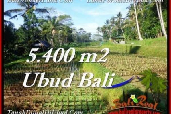JUAL TANAH MURAH di UBUD 54 Are di Ubud Payangan