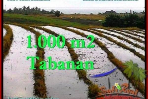 JUAL TANAH MURAH di TABANAN BALI 8 Are di Tabanan Selemadeg