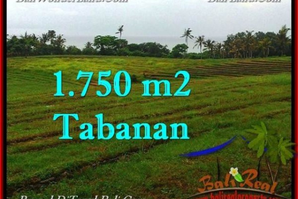 JUAL TANAH di TABANAN 1,750 m2  View Laut, Sawah dan Gunung