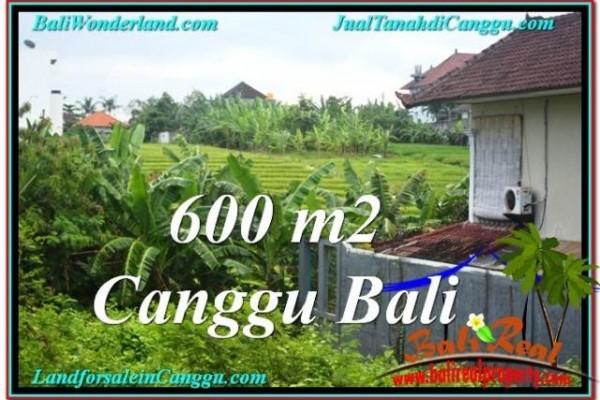 TANAH DIJUAL di CANGGU 600 m2 di Canggu Brawa