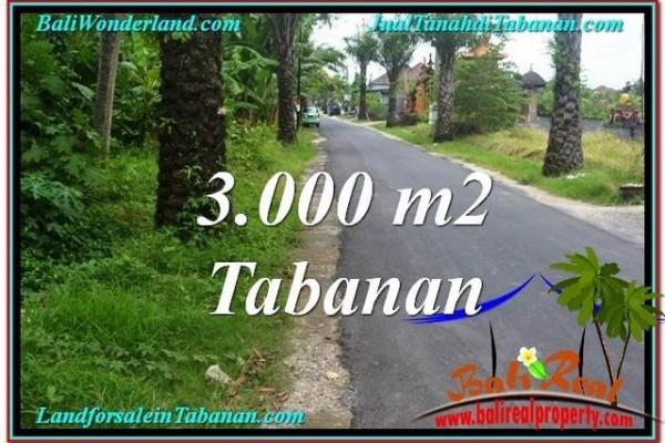 TANAH JUAL MURAH  TABANAN 3,000 m2  View kebun