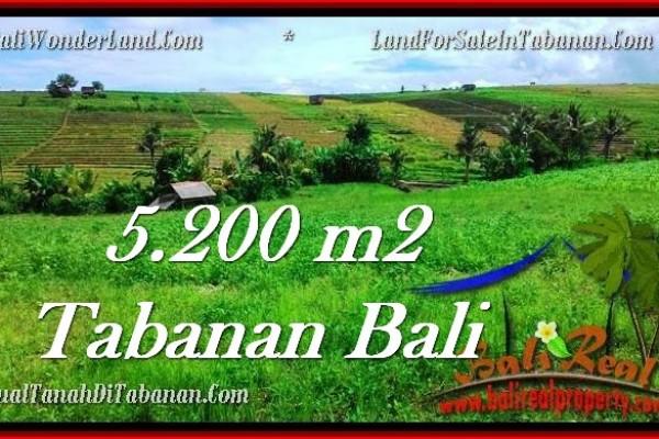 TANAH MURAH JUAL di TABANAN BALI 5,200 m2  View sawah dan sungai