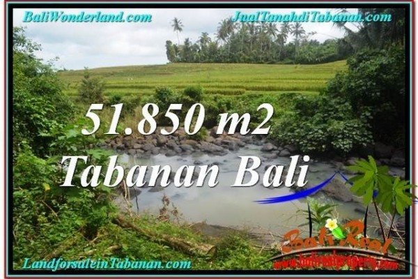 TANAH JUAL MURAH  TABANAN 51,850 m2  View Sawah dan Sungai