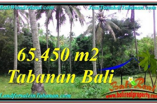 JUAL TANAH MURAH di TABANAN BALI 65,450 m2  View laut dan sungai