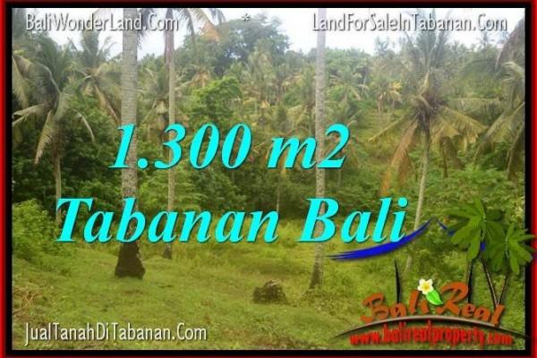 TANAH MURAH di TABANAN DIJUAL Untuk INVESTASI TJTB314