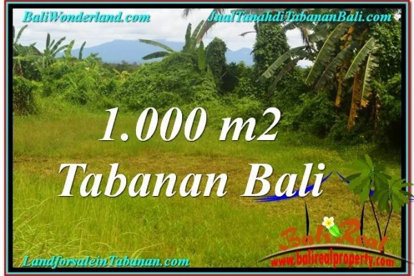 JUAL TANAH MURAH di TABANAN 1,000 m2  View Laut, Gunung dan sawah