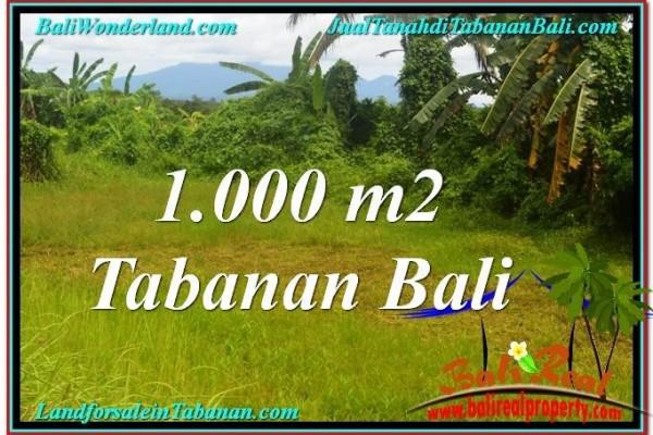 INVESTASI PROPERTY, TANAH di TABANAN BALI DIJUAL MURAH TJTB311