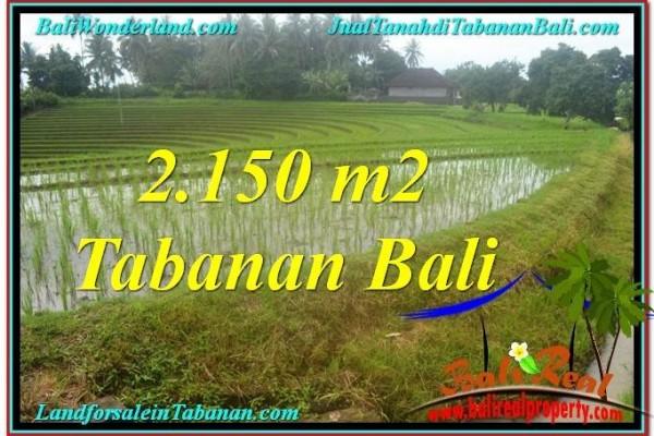JUAL TANAH MURAH di TABANAN 2,150 m2 di Tabanan Selemadeg