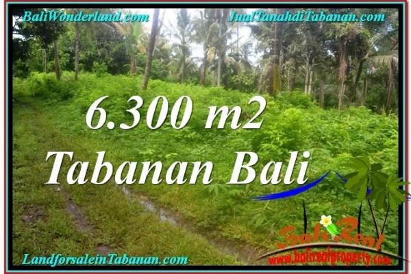 TANAH MURAH DIJUAL di TABANAN Untuk INVESTASI TJTB313