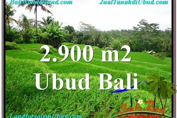 TANAH MURAH di UBUD BALI Untuk INVESTASI TJUB564