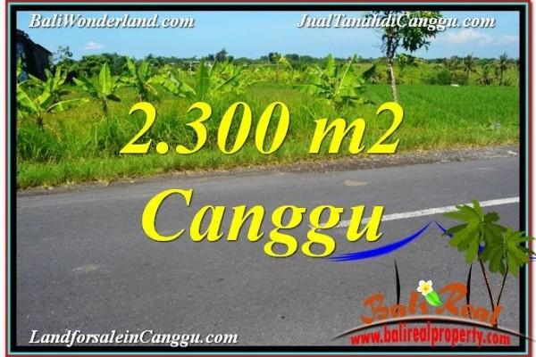 JUAL MURAH TANAH di CANGGU 23 Are View sawah,gunung, lingkungan villa