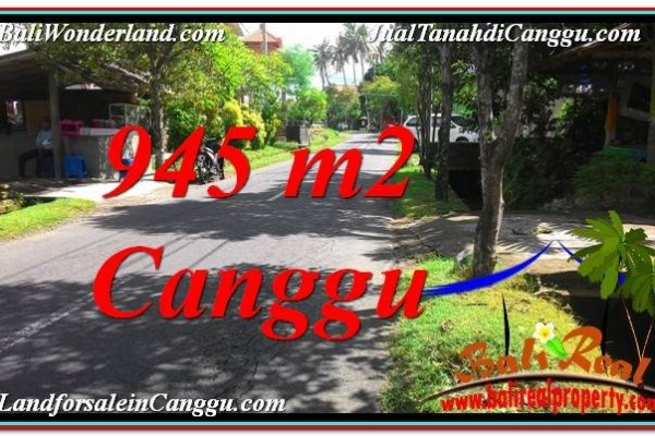 DIJUAL TANAH MURAH di CANGGU BALI 9.45 Are di Canggu Pererenan