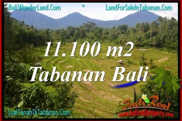 TANAH DIJUAL di TABANAN Untuk INVESTASI TJTB320