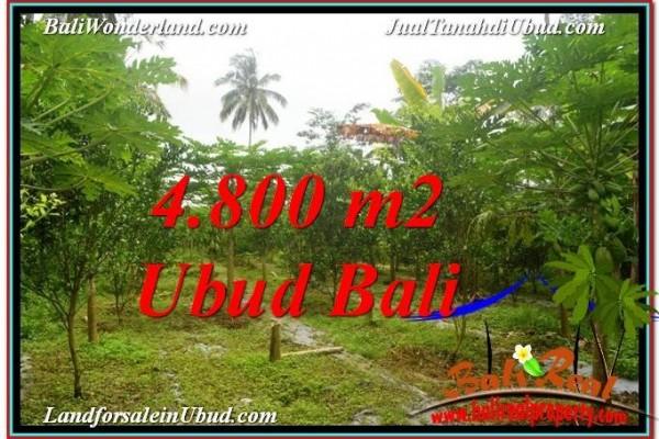 TANAH MURAH DIJUAL di UBUD BALI Untuk INVESTASI TJUB571