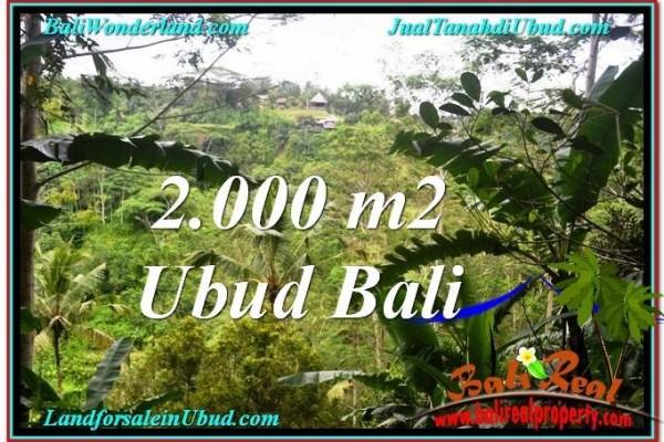TANAH MURAH DIJUAL di UBUD BALI Untuk INVESTASI TJUB573