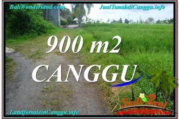 JUAL TANAH MURAH di CANGGU BALI 900 m2  View sawah lingkungan villa