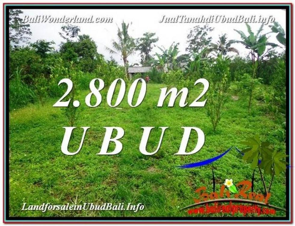 JUAL TANAH MURAH di UBUD BALI Untuk INVESTASI TJUB592