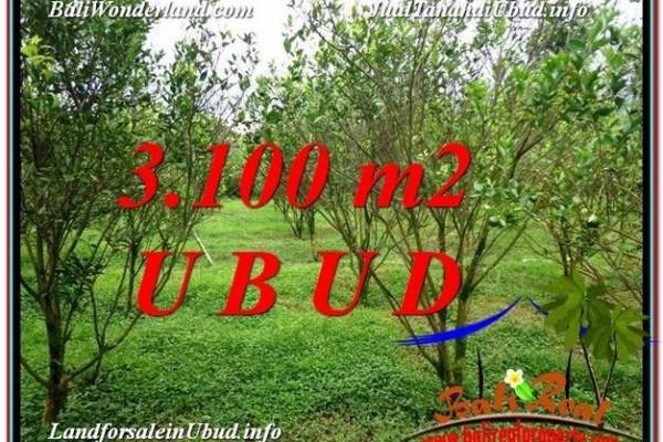 TANAH MURAH  di UBUD BALI DIJUAL 31 Are View kebun