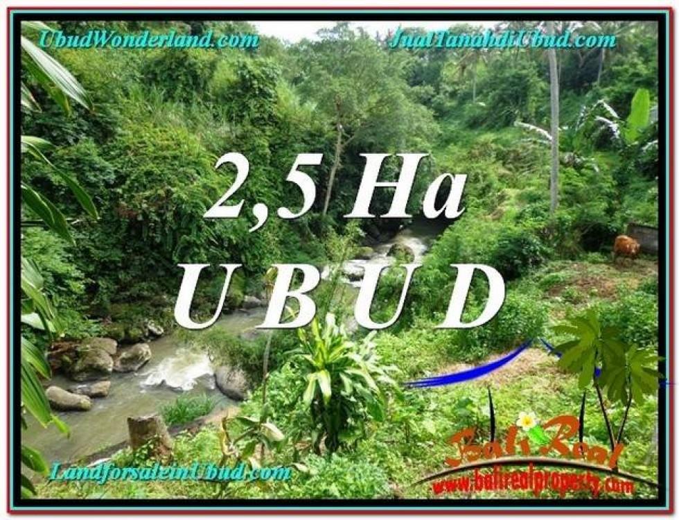 TANAH MURAH JUAL   UBUD 260 Are View Sawah, Sungai dan Tebing