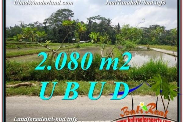 JUAL TANAH di UBUD 21 Are View  Sawah