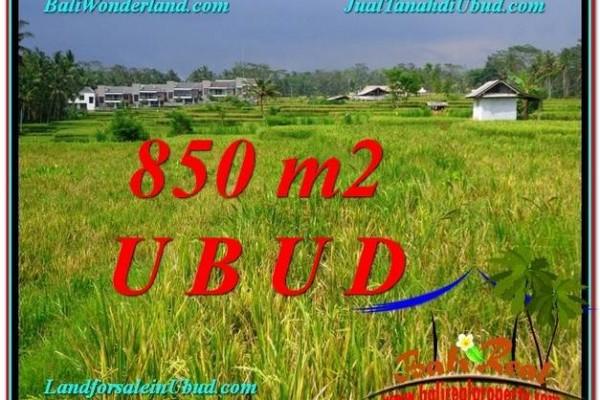TANAH MURAH DIJUAL di UBUD BALI 850 m2 di Ubud Pejeng