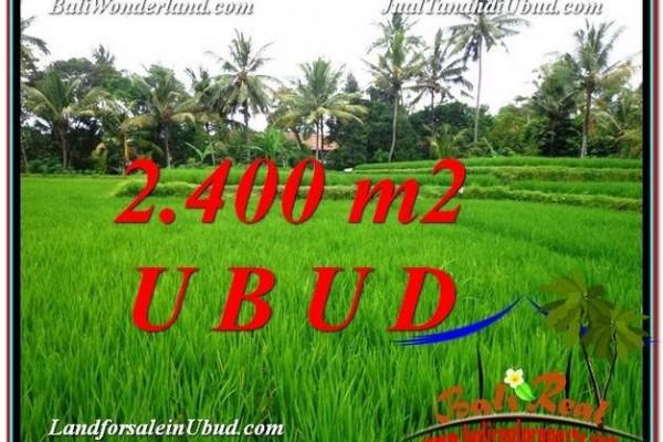 TANAH MURAH DIJUAL di UBUD BALI Untuk INVESTASI TJUB587