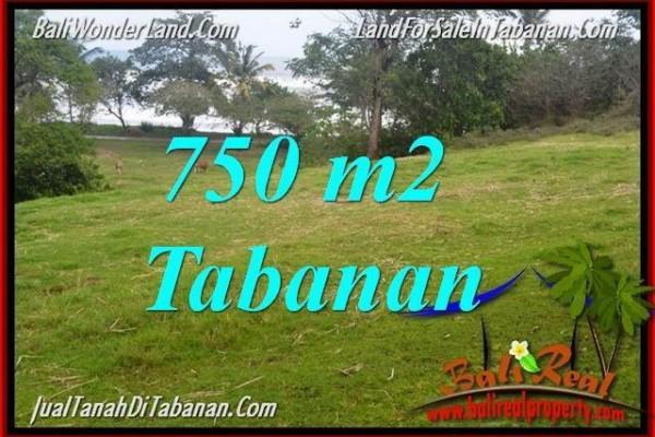 TANAH di TABANAN JUAL MURAH 7.5 Are View laut dan sawah