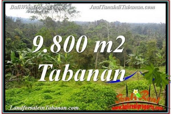 JUAL TANAH di TABANAN 9,800 m2 di Tabanan Selemadeg