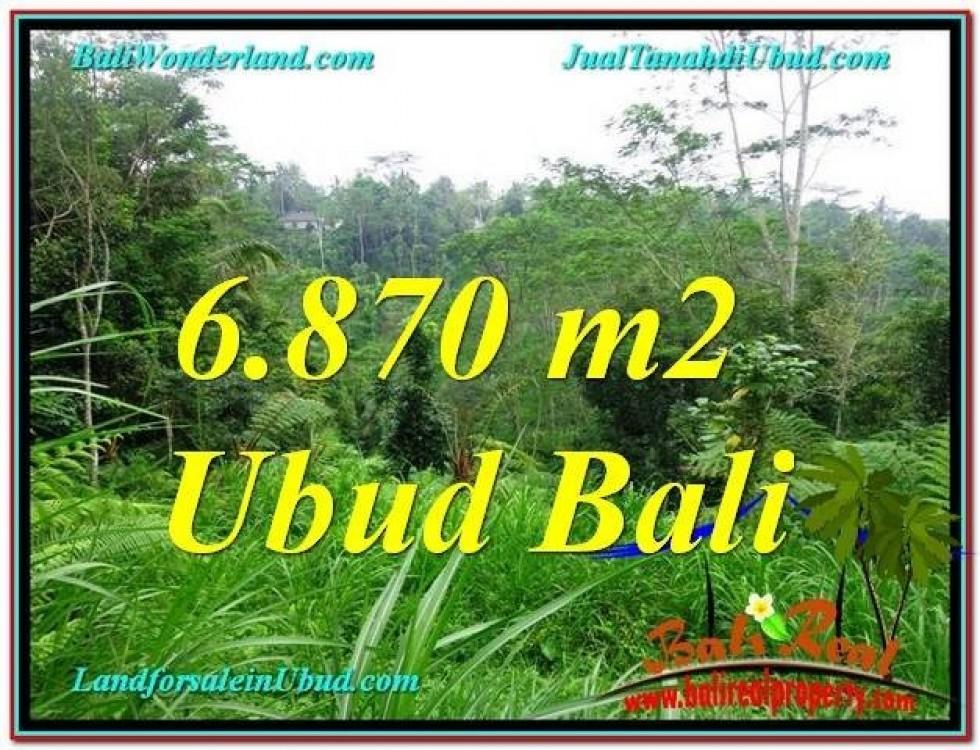 TANAH JUAL MURAH  UBUD BALI 6,870 m2  View Kebun, Sungai dan Tebing