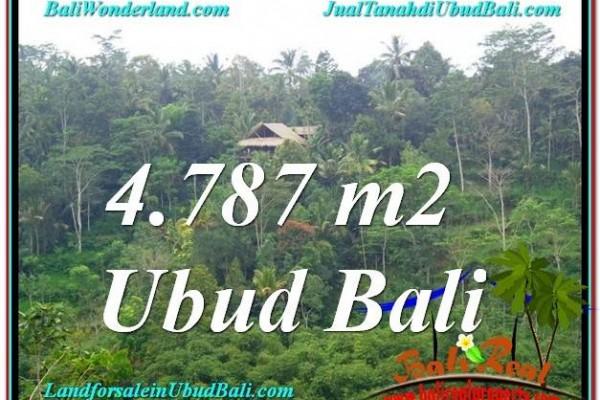 TANAH di UBUD JUAL MURAH 48 Are View Kebun, Sungai dan Tebing