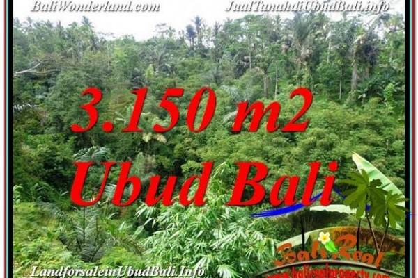TANAH di UBUD BALI DIJUAL TJUB608