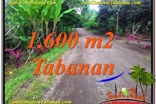 TANAH MURAH DIJUAL di TABANAN BALI Untuk INVESTASI TJTB337
