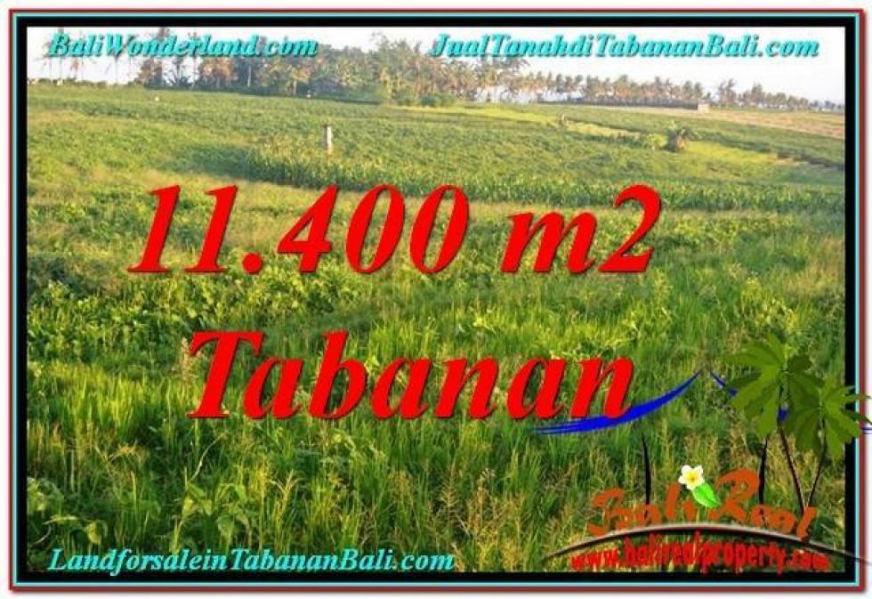 DIJUAL MURAH TANAH di TABANAN 11,400 m2 di Tabanan Selemadeg