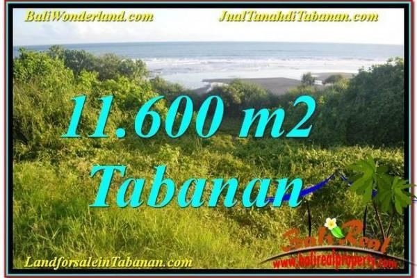 TANAH DIJUAL di TABANAN BALI 11,600 m2 di Tabanan Selemadeg