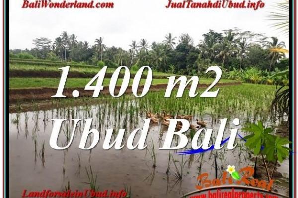 JUAL TANAH di UBUD BALI 14 Are View Sawah