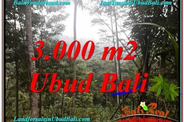 DIJUAL TANAH di UBUD TJUB617
