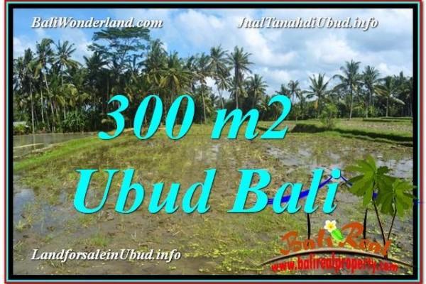 JUAL TANAH MURAH di UBUD 300 m2 di Ubud Pejeng