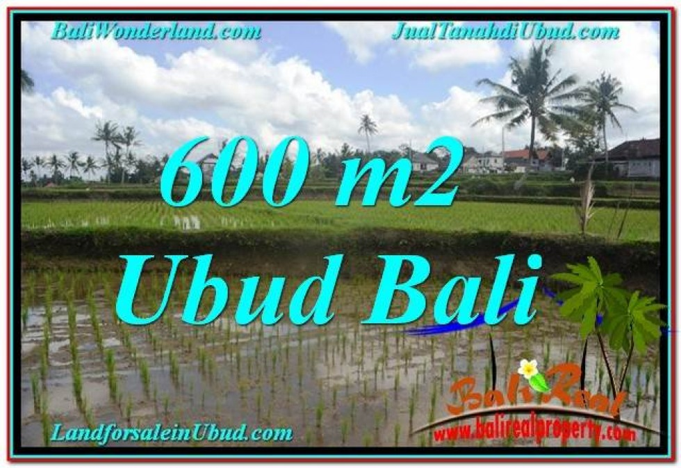TANAH MURAH DIJUAL di UBUD BALI Untuk INVESTASI TJUB621