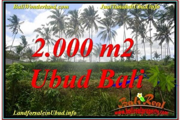 JUAL MURAH TANAH di UBUD BALI 2,000 m2  View Sungai  Kecil lingkungan Villa