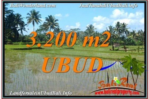 TANAH di UBUD DIJUAL 3,200 m2 di Ubud Payangan