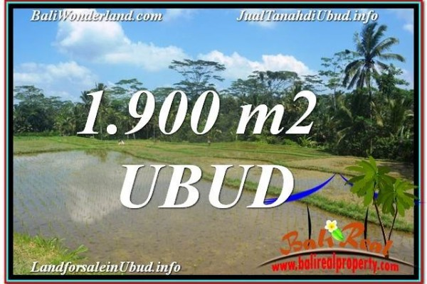 TANAH MURAH JUAL   UBUD 19 Are View Sawah dan Sungai