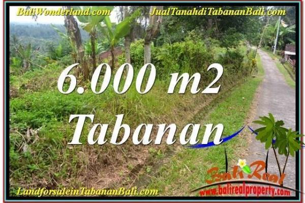 INVESTASI PROPERTI, TANAH DIJUAL di TABANAN BALI TJTB349