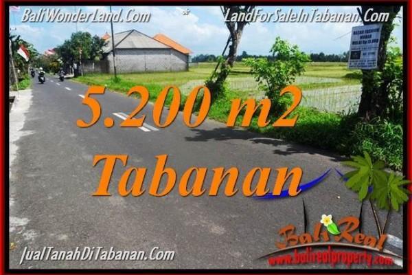 JUAL TANAH MURAH di TABANAN 5,200 m2 di Tabanan Kediri