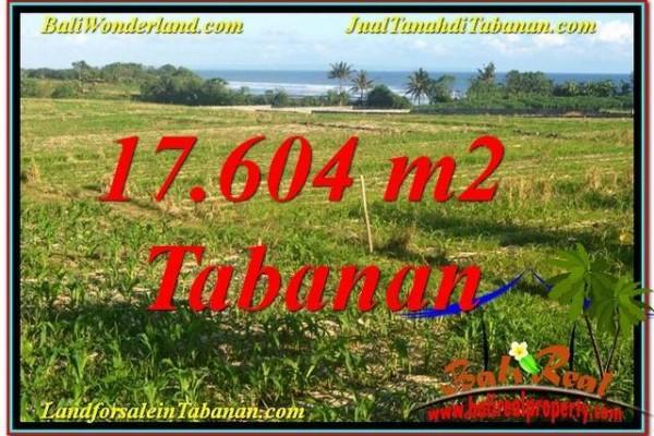 TANAH DIJUAL di TABANAN BALI 176.04 Are View Laut, Gunung dan sawah