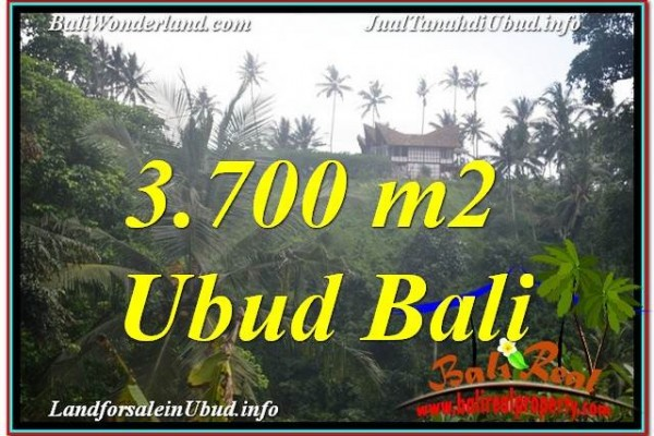 JUAL TANAH di UBUD BALI 3,700 m2  View Tebing dan Sungai, Link. Villa