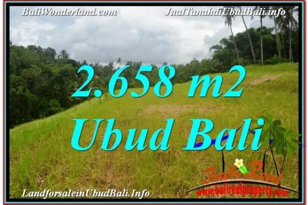 JUAL TANAH di UBUD BALI 2,658 m2  View Tebing dan Sungai